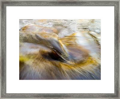 Leibert 10 Framed Print