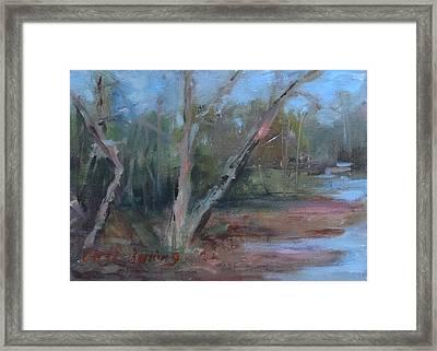 Leiper's Creek Study Framed Print by Carol Berning