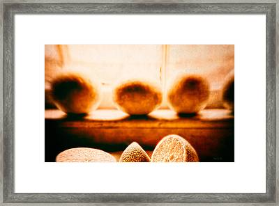 Lemon Among Oranges Framed Print by Bob Orsillo