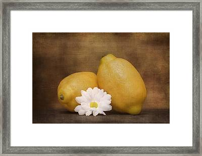 Lemon Fresh Still Life Framed Print