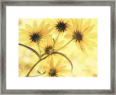 Lemon Kisses Framed Print