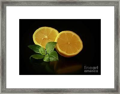 Lemon Splendor Framed Print by Inspired Nature Photography Fine Art Photography