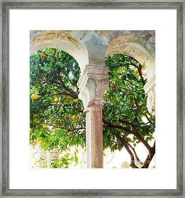Lemon Tree Very Pretty Framed Print