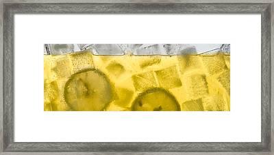 Lemonade Framed Print by Steve Gadomski