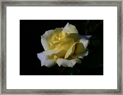 Lemoncandy Framed Print by Doug Norkum