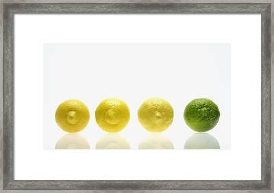 Lemons And Lime Framed Print by Kelly Redinger