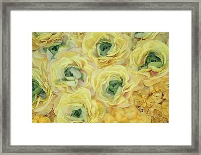 Lemons And Limes Framed Print by Patrisha Gill