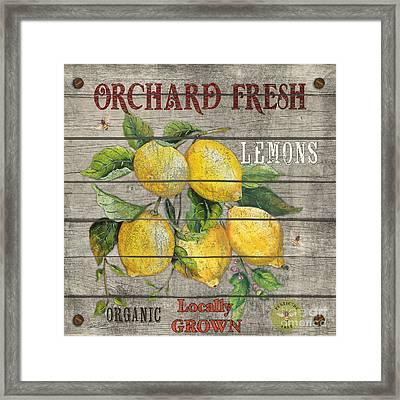 Lemons-jp2679 Framed Print by Jean Plout