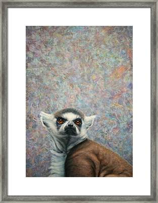 Lemur Framed Print by James W Johnson