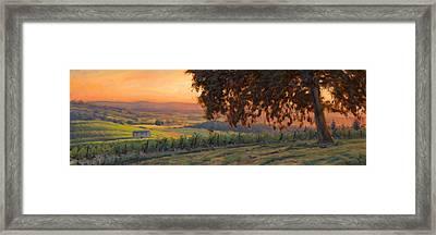 Lenne Vineyard Framed Print by Michael Orwick