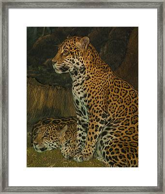 Leo And Friend Framed Print