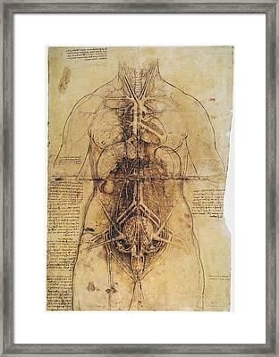 Leonardo: Anatomy, C1510 Framed Print by Granger