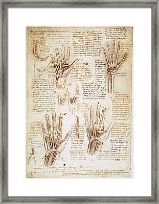 Leonardo: Hands, C1510 Framed Print by Granger