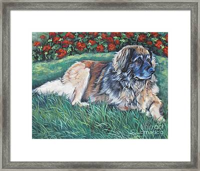Leonberger Framed Print