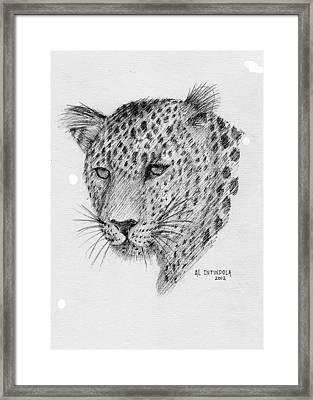Leopard Framed Print