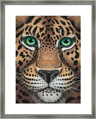 Wild Eyes Leopard Face Framed Print