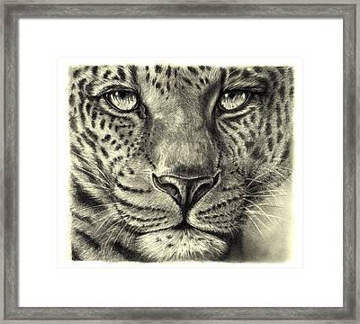 Leopard Framed Print by Heidi Kriel