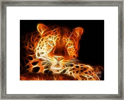 Leopard Intimidating Look Framed Print by Pamela Johnson