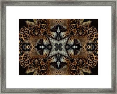 Leopard Kaleidoscope  Framed Print