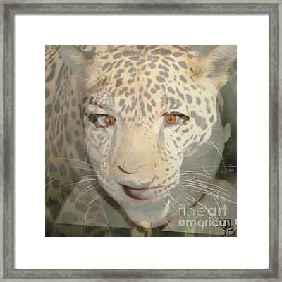 Leopard Lady Framed Print by Mindy Bench