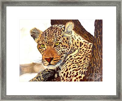 Leopard Point Of View Framed Print