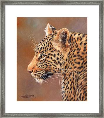 Leopard Portrait Framed Print by David Stribbling