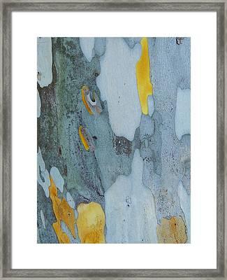 Leopard Tree Bark Abstract No 1 Framed Print