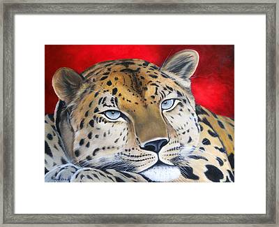 Leopardo Framed Print by Angel Ortiz