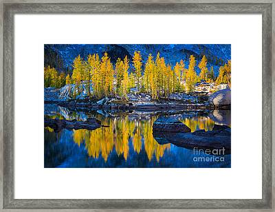 Leprechaun Tamaracks Framed Print