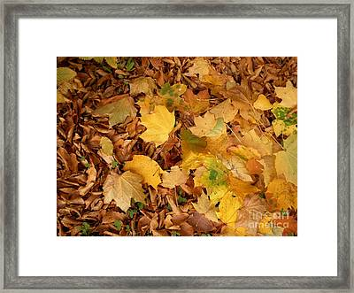 Les Feuilles Mortes Framed Print by Mariana Costa Weldon