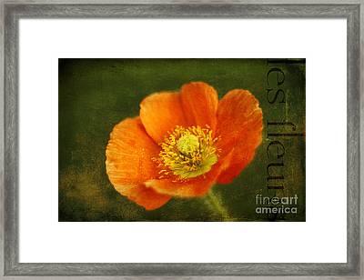 Les Fleurs Framed Print by Darren Fisher