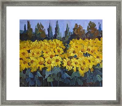 Les Valayans Sunflowers Framed Print