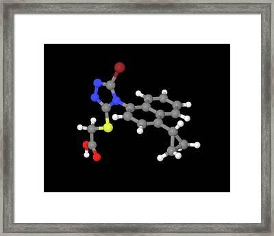 Lesinurad Gout Drug Molecule Framed Print