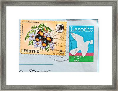 Lesotho Stamp Framed Print by Tom Gowanlock