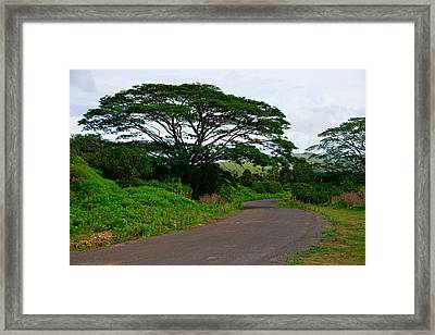 Less Traveled Road Framed Print