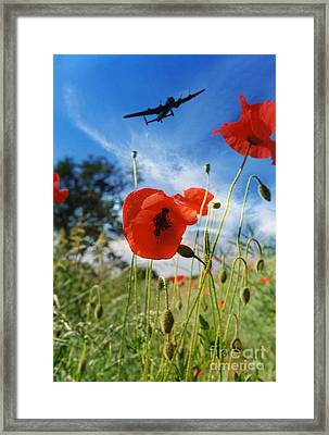 Lest We Forget Framed Print by J Biggadike