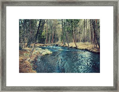 Let It All Go Framed Print by Laurie Search