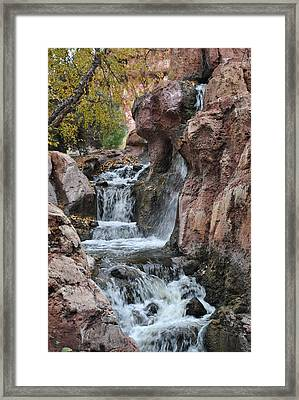 Framed Print featuring the photograph Let It Fall by Amanda Eberly-Kudamik