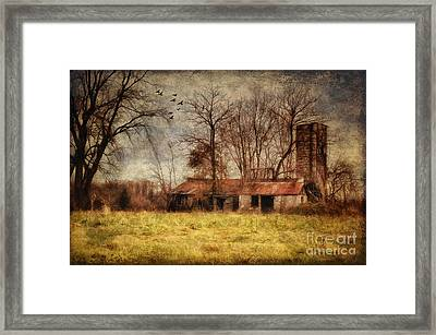 Let It Go Framed Print by Lois Bryan