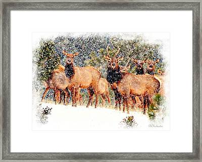 Let It Snow - Barbara Chichester Framed Print