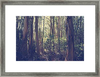 Let Me Be Weightless Framed Print by Laurie Search