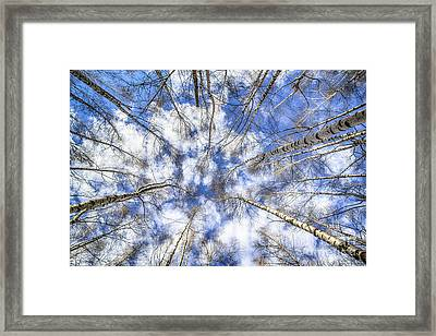 Let Me Lord Wind ... Framed Print