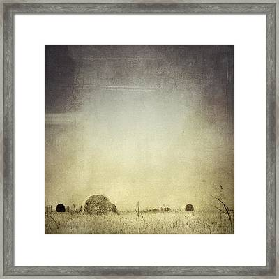 Let The Rain Come Down Framed Print by Trish Mistric