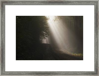 Let The Sun Shine Framed Print