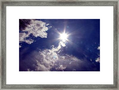 Let The Sun Shine In Framed Print by Andrea Dale