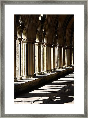 Let The Sun Shine Through Framed Print by Wendy Wilton