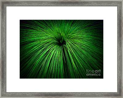 Let There Be Life Framed Print by Julian Cook