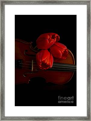Let Us Make Beautiful Music Together Framed Print by Edward Fielding
