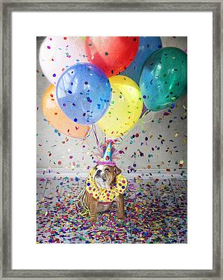 Lets Celebrate Framed Print