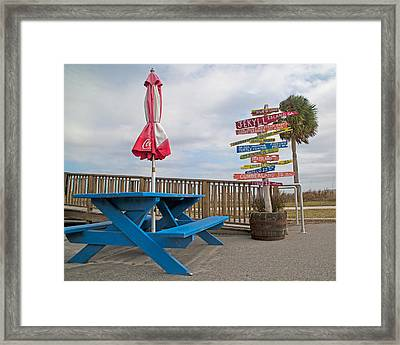 Let's Have A Picnic Jekyll Island Framed Print